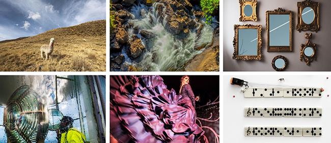 Conheça as histórias dos vencedores do PHotoFUNIBER'20